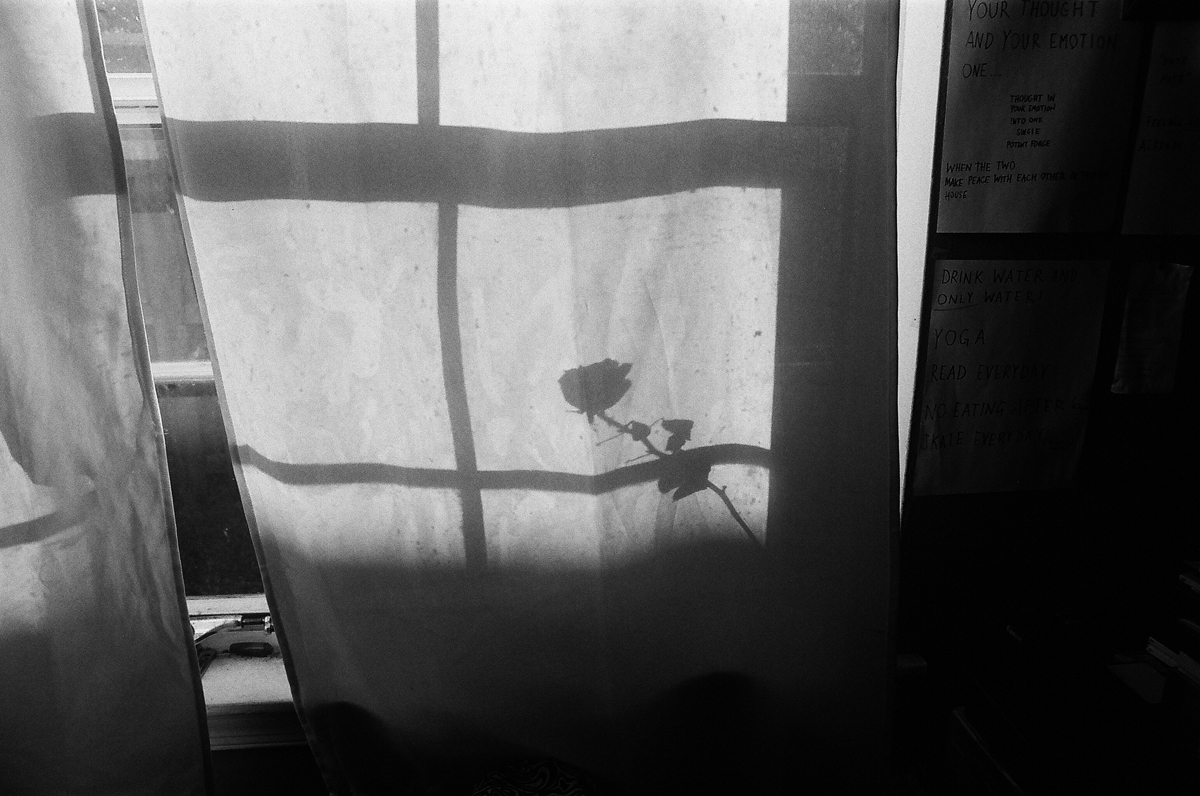 Beatrice Domond |Apartamento Magazine